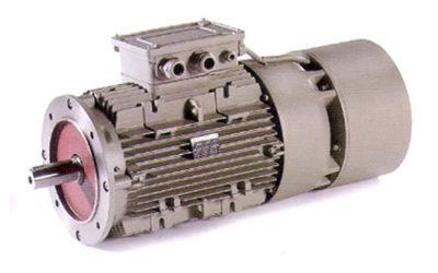 Motori asincroni trifase autofrenanti